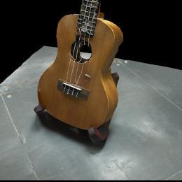 蛋哥的尤克里里2-三维模型