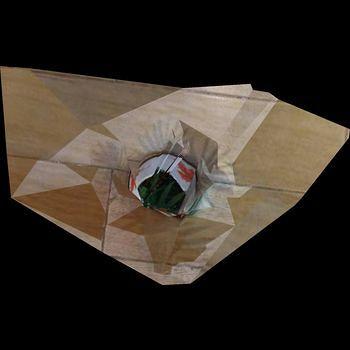 盆栽-三维模型
